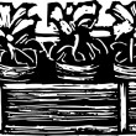 Woodcut Illustration of Flower Box — Stock Vector #29559537