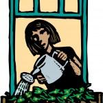 Woman Watering Plants in Windowbox — Stock Vector #29845391