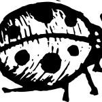 Woodcut Illustration of Ladybug — Stock Vector #29847775