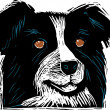 Woodcut Illustration of Cattle Dog Face — Image vectorielle