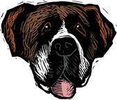 Ilustración de xilografía de cara de perro san bernardo — Vector de stock