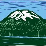 Mount Rainier — Stock Vector #30502101