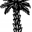 Stock Vector: Palm Tree