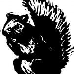 Holzschnitt-Abbildung von squirrel — Stockvektor