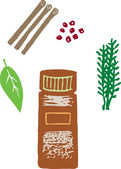 Woodcut illustration of Spices — Stock Vector