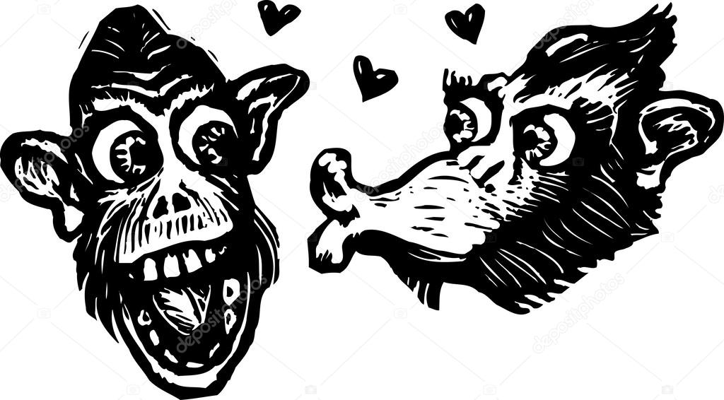 Two Monkeys in Love of Two Monkeys or Chimps