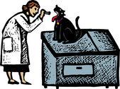 Woodcut illustration of Veterinarian Examing Cat — Stock Vector
