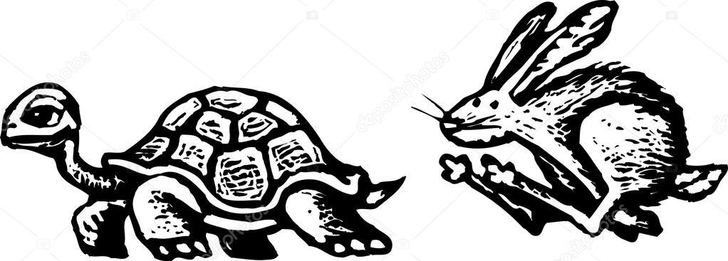 Der Hase Und Die Schildkröte Schildkröte Und Der Hase