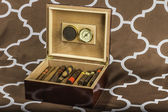 Cigar Humidor 3 — Stock Photo