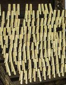 Oblečení piny — Stock fotografie