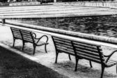 Park Benches Black and White — Stock fotografie