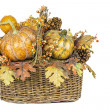 Stock Photo: Fall Harvest Basket Isolated