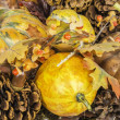 Fall Harvest Pumpkin Scene — Stock fotografie