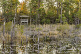 Lake and Forest Hunting Blind. — Stock Photo