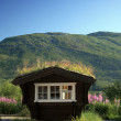 Small house with a roof made of grass greener — Stock Photo