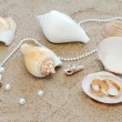 Wedding rings and cockleshells on sand — Stock Photo