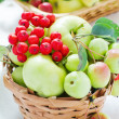 Apples in the basket — Stockfoto