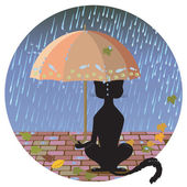 Cat in the Rain — Stok Vektör