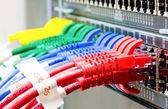 Network switch and UTP ethernet cables — Stock Photo