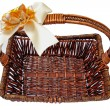 Stock Photo: Wicker basket isolute white Background