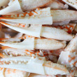 Many Pincers ready to eat — Stock Photo