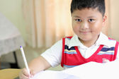 Checking documents The boy intently. — Stock Photo