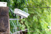 CCTV on the wall — Stock Photo