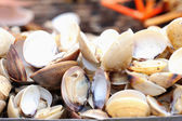 Shellfish grilled on the stove — Stock Photo