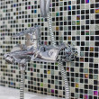 Stock Photo: Stainless steel kitchen faucet and sink
