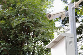 Two security surveillance cameras near green forest — Foto Stock