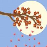 Sakura blossom beauty image — Stock Vector #29725795