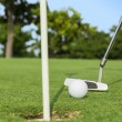 Putter puts golf ball to hole on green of golf course — Stock Photo #28140353