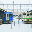 Hakodate City, Japan, December, 22th, 2009: Hakodate Station Ho — Lizenzfreies Foto