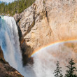 Yellowstone Lower Falls with rainbow. — Stock Photo
