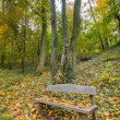 Wooden bench. — Stock Photo