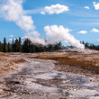 Stock Photo: Famous geyser Old Faithful.