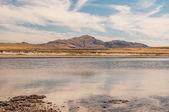Paesaggio del gran lago salato. — Foto Stock