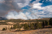 Fire and smoke in Yellowstone — Stock Photo