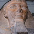 Stock Photo: Pharaoh Ramses II