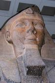 Pharaoh Ramses II — Stock Photo