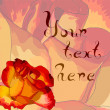 Abstract romantic background with roses and place fore your text — Imagen vectorial