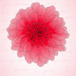 Beautiful card with chrysanthemum  — Image vectorielle