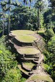 Main terraces of ancient Ciudad Perdida archeological site — Stock Photo