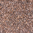Close-up of coffee beans background — Stock Photo