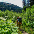 Stock Photo: Women Backpacking in Summer