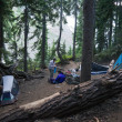 Stock Photo: Solitary Womat Remote Campsite