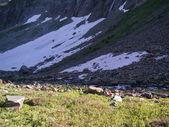 山でリラックスした 2 人の女性 — ストック写真