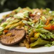 Stir fried meat with vegetables — Stock Photo