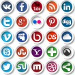Social media icons — Stock Vector #36229753