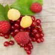 The composition of the ripe and juicy berries currant and raspberry — Stock Photo
